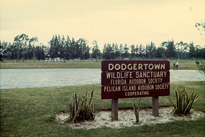 Dodgertown Wildlife Sanctuary in Cooperation with Florida Audubon Society, Pelican Island Audobon Society