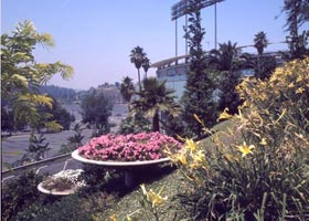 "After the inaugural 1962 season, Dodger owner Walter O'Malley invested an additional $1.5 million for a beautification project of Dodger Stadium's grounds. A myriad of trees, bushes, flowers and ground cover was added for the 1963 season. A plaque is presented to O'Malley by noted landscape architect John T. Ratekin at the Statler Hotel on February 21, 1963 for making Dodger Stadium ""one of the show places in Southern California."" According to Ratekin, it will be ""a mass of color, every hue of the rainbow, depicting the seal of the City of Los Angeles"" for the 1963 season."