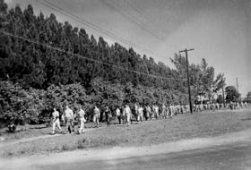 With more than 600 Dodger players on property, many were assigned to practice on one of the fields near the airport, which meant taking a walk across the street.