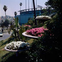 Walter O'Malley and his Landscape for Dodger Stadium