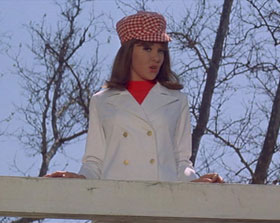 "In ""Spinout,"" stylish Shelley Fabares looks down at Elvis from a bridge after she had distracted him and he ran his racing car off the road and into the water below."