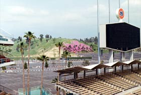 Signature palm trees and colorful flowers on the surrounding hillsides are part of the picturesque landscape of Dodger Stadium.